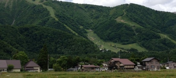 Green season in Hakuba